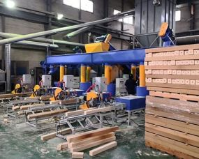 Automatic wood sawdust block pro