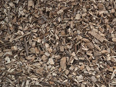 Chips From Wood